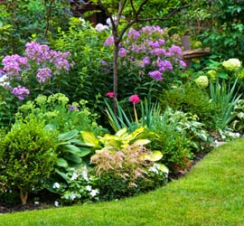 Landscaping Home Services - Innovate Group, LLC
