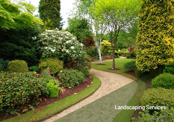 Landscaping Services Thank You - Innovative Group LLC